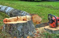 free Windsor tree felling quotes